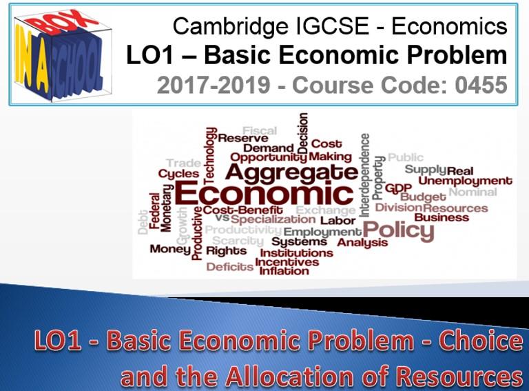 IGCSE Economics 0455